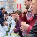 Calcotada Valls, smullen van een bosje 'Catalaanse nieuwe'