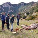 El Toscar, grotten, watervallen en een halve stier