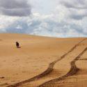 Punta del Fangar Woestijn in de Middellandse Zee