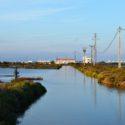 Ebro Delta, simpelweg gelukkig tussen de rijstvelden