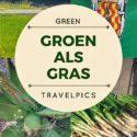GROEN ALS GRAS, BDT GREEN TRAVELPICS