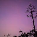 Think PINK – BonDiaTarragona pink travelpics
