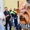 Sant Antoni Abad: de gelukkige huisdieren van El Perello
